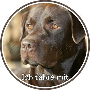 Aufkleber Auto - Labrador Retriever - Folien Sticker - Dog Sticker