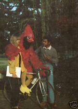 ANDREWS UNIVERSITY BERRIEN SPRINGS MICHIGAN 1981 YEARBOOK THE CARDINAL