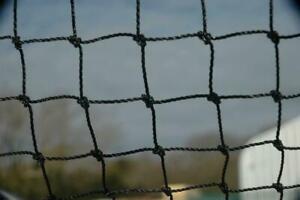 Anti Bird Netting Heavy Duty Garden Net Strong Pigeon Cat Run Mesh 50mm 20 X 20M