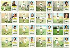 Lote de 16 cromos de futbol album 1973/74 FHER: Elche C.F. (Equipo completo)
