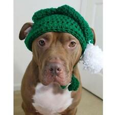 Green Elf with White Pom Poms Crochet Hat for Dogs - Free Shipping