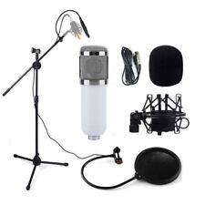 Audio Pro Condenser Microphone Studio Sound Recording w/Boom Stand Pop Filter HS