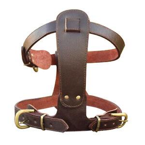 Genuine Leather Medium Large Dog Pet Harness Pitbull Boxer Doberman Heavy Duty