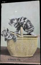 "OLD POSTCARD OF CATS / KITTENS - USED 1913- ""IN DURANCE VILE"""