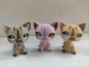 3pcs/lot LPS Toy  pet shop short hair cat#933#468#886 kid toy