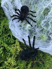 2 Spider/Tarantulas Fake/Prank/Halloween Black  Large 3.75 x 5.5-in  Scary