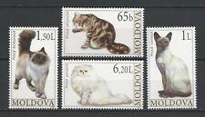 Moldova 2007 Animals, Pets, Cats 4 MNH stamps
