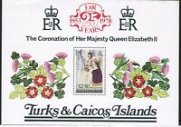 Turks and Caicos Islands 25th Anniversary Coronation 1978 SG MS498 MNH UMM