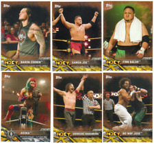 2017 Topps WWE NXT Wrestling - Matches and Moments BRONZE - Choose Card #'s 1-50