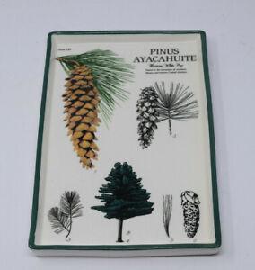 "Rare Creative Co-Op Pinus Ayacahuite Pine Cones Plate 189 Dish Tray 10""x6.5"""