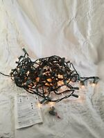 100 Count Clear Mini Christmas Lights Green Wire