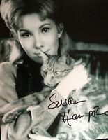 SUSAN HAMPSHIRE - GREAT ACTRESS - SUPERB SIGNED B/W PHOTOGRAPH