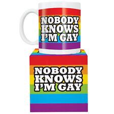 NOBODY KNOWS I'M GAY RAINBOW MUG FUNNY COFFEE TEA KITCHEN NOVELTY GIFT