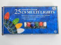 Vintage Christmas Lights Indoor/Outdoor 25c9