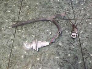 OEM 94-01 Acura Integra front blinker turn signal light cut wire harness plug L