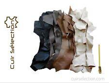Lot 1 kg de chutes de cuir Chèvre multicolores peau souple - Cuir Sélection