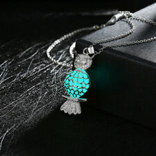 New Glow in the Dark Silver Plated Chain Owl Shape Frame Locket Necklace Pendant