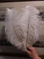 "100 bleached white first grade drabs ostrich feather 35mm (14"")"