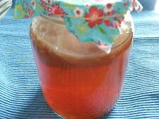 Kombucha Teepilz ★ Ferment-Getränk ★★ Tee Pilz ★