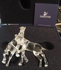 Swarovski Crystal Pair Of Foals. Boxed.