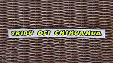 VALENTINO ROSSI Helmet visor decal 1 TRIBU DEI CHIHUAHUA- fluorescent! THE BEST!