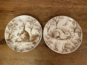 "Hobby Lobby Easter 2016 Bunny Rabbit 8"" Salad Plates Set of 2"