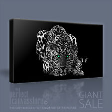 JAGUAR AWESOME GREEN EYED STALKING BIG CAT CANVAS ART PRINT PICTURE Art Williams