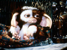 Gizmo (voiced by Howie Mandel) UNSIGNED photo - 853 - Gremlins