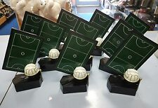 1x 190mm, 1x 160mm 8x 130mm Netball Trophies. Perfect for B&F, R/up and 8 others
