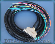 10' MegaSquirt wiring harness - works with MS1, MS2, MS3