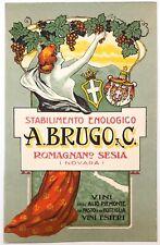 STABILIMENTO ENOLOGICO A.BRUGO Romagnano Sesia cartolina pubblicitaria Vini