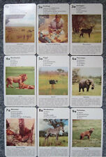 Bielefeld Quartet No. 1038 Serengeti must not die grizmek Africa OVP