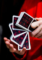 PALM Playing Cards by Dealersgrip