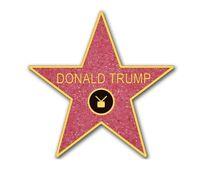 4x4 inch STAR DONALD TRUMP WALK OF FAME BUMPER STICKER WALL DECAL WINDOW PRO GOP