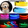 Light up LED Dog Pet Collar USB Rechargeable Pet Safety Luminous Collars