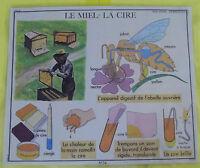 Postal escolar Biodiversidad el Miel y la Cera Colmena y Abeja