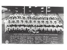 1950 NEW YORK YANKEES 8X10 TEAM PHOTO BASEBALL MLB PICTURE NY AL CHAMPS