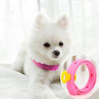 Dog Kitten Adjustable Pet Collar Neck Strap Remedy Anti Flea Mite Acari Tick  Ih