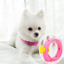 1x Dog Kitten Adjustable Pet Collar Neck Strap Remedy Anti Flea ZYHGUKJKH4