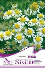1 Pack Chamomile Seeds Heirloom Herb Seeds Organic Plant seed Garden JG