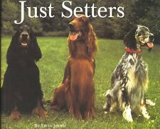 Just Setters (Just (Willow Creek)