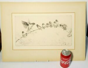 """Mounted Original Sketch Drawing Early Birds Signed by S.R. Barethwell 15 x 8"""""""