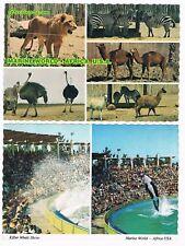MARINE WORLD Africa Redwood City CA 3 postcards killer whale dolphins 1970's