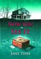 Now You See It: A Grace Street Mystery (Grace Street Mysteries) by Jane Tesh