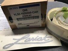 2001-2003 Ford F-150 RH Passenger Side Stripe Decal Kit new OEM YL3Z-1620000-CAH