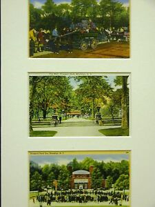 3 Vintage Matted Post Cards PROSPECT PARK BROOKLYN #3