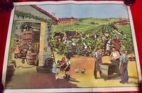 Ancienne Affiche scolaire école MDI 90 x 68 cm les vendanges raisin  la ferme