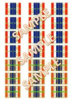 1/72 25mm 28mm  Napoleonic Waterloo French Infantry/Imperial Guard Flags