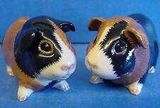 QUAIL CERAMIC MULTICOLOUR GUINEA PIG PIGS SALT & PEPPER POT CONDIMENT CRUET SET