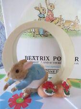 BEATRIX POTTER  ~  PETER RABBIT  ~ LETTER O   FIGURINE